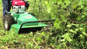 Tips for Using an Outback Brushcutter