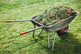 Lawn Waste Management: Save the Environment and Your Wallet
