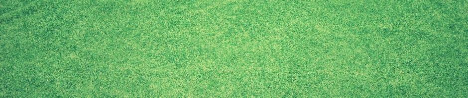 Frequently Asked Questions about Aerating, Dethatcing and Overseeding